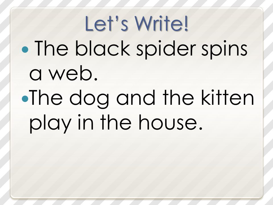 Let's Write! The black spider spins a web. The dog and the kitten play in the house.