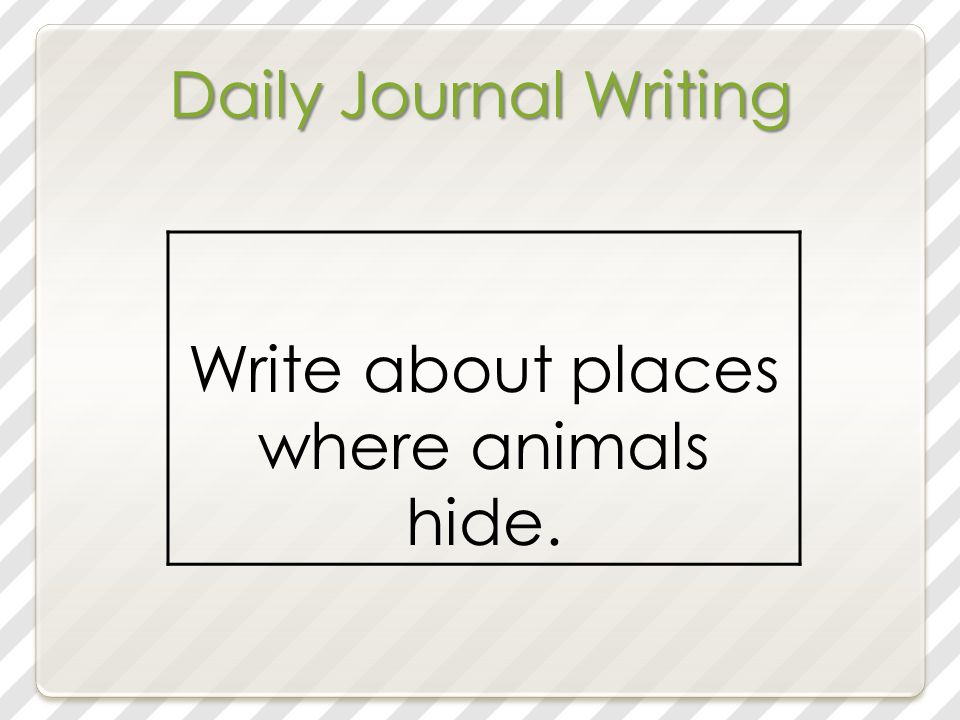 Daily Journal Writing Write about places where animals hide.