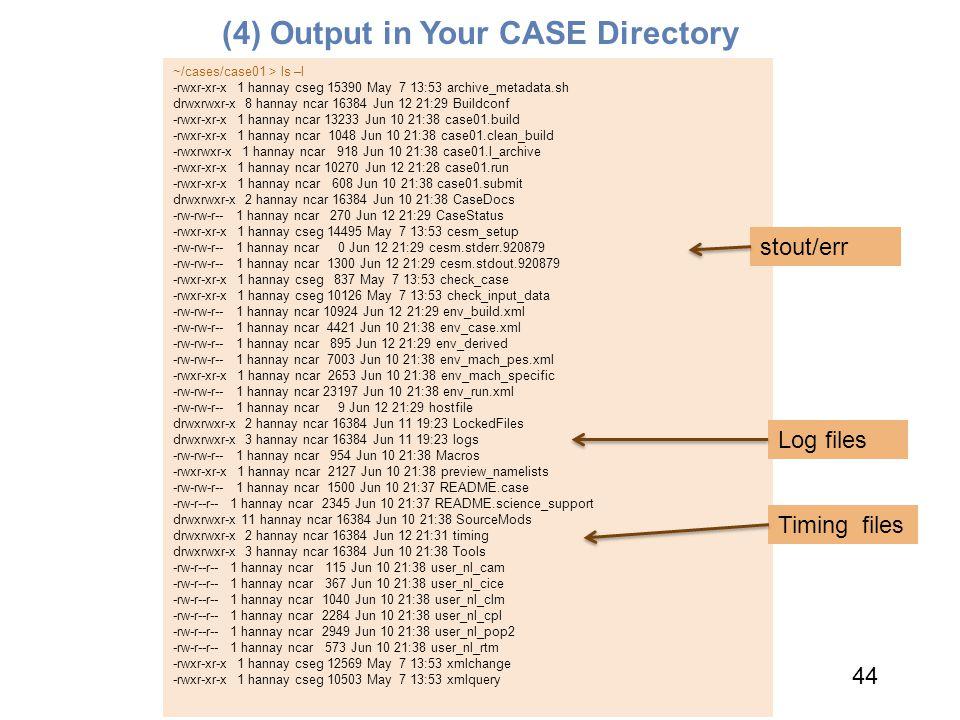 (4) Output in Your CASE Directory 44 ~/cases/case01 > ls –l -rwxr-xr-x 1 hannay cseg 15390 May 7 13:53 archive_metadata.sh drwxrwxr-x 8 hannay ncar 16