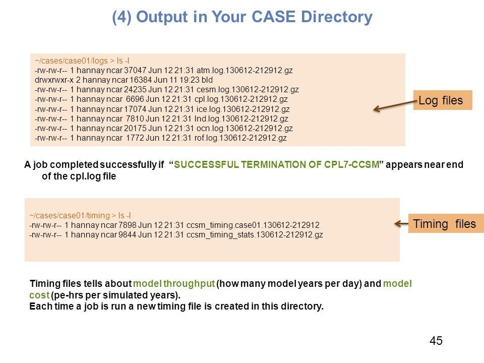 ~/cases/case01/timing > ls -l -rw-rw-r-- 1 hannay ncar 7898 Jun 12 21:31 ccsm_timing.case01.130612-212912 -rw-rw-r-- 1 hannay ncar 9844 Jun 12 21:31 c