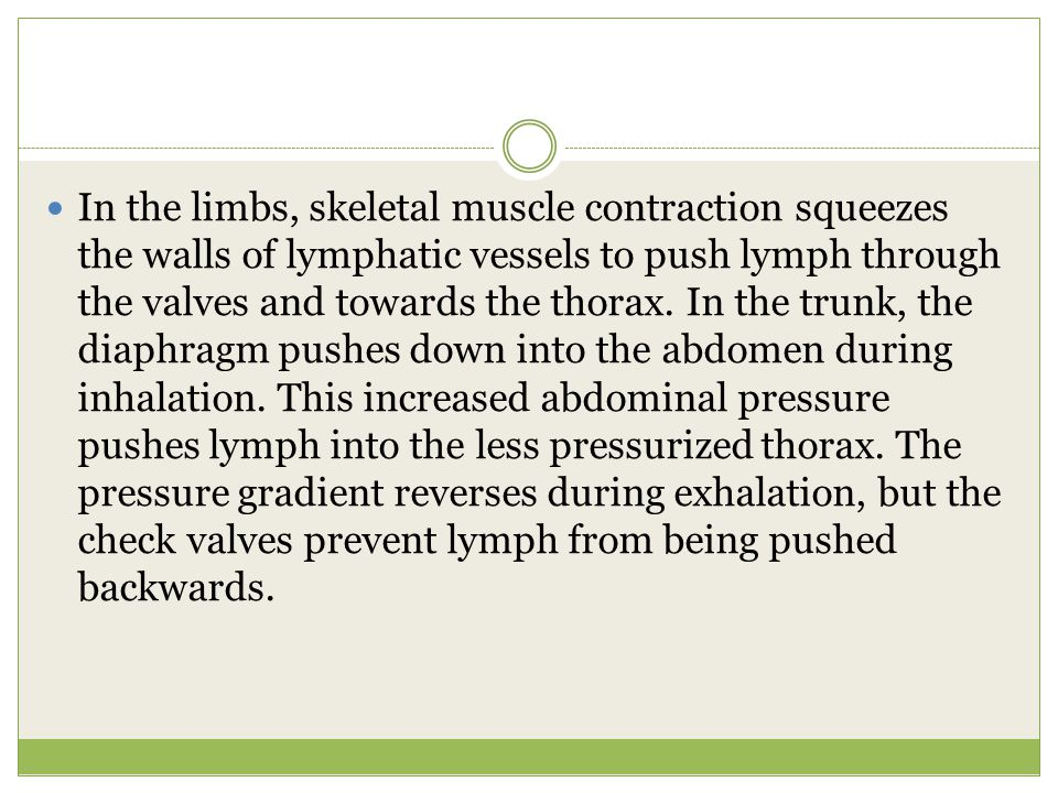 Lymph Circulation One of the primary functions of the lymphatic system is the movement of interstitial fluid from the tissues to the circulatory system.