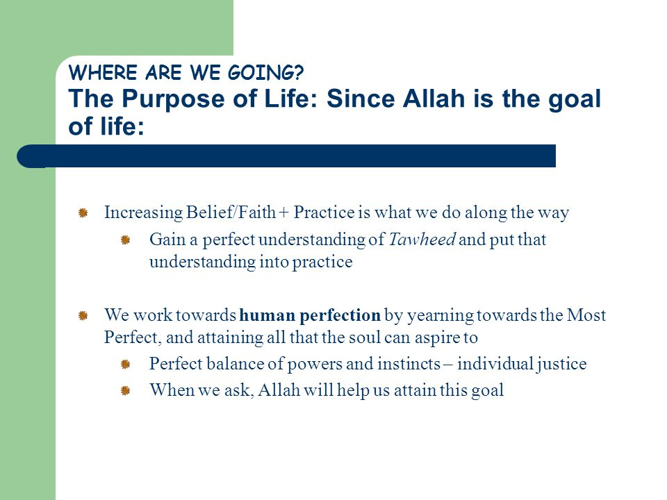 WHERE ARE WE GOING? The Purpose of Life: Since Allah is the goal of life: Increasing Belief/Faith + Practice is what we do along the way Gain a perfec