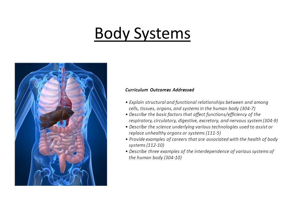 Body Systems Curriculum Outcomes Addressed Explain structural and functional relationships between and among cells, tissues, organs, and systems in th