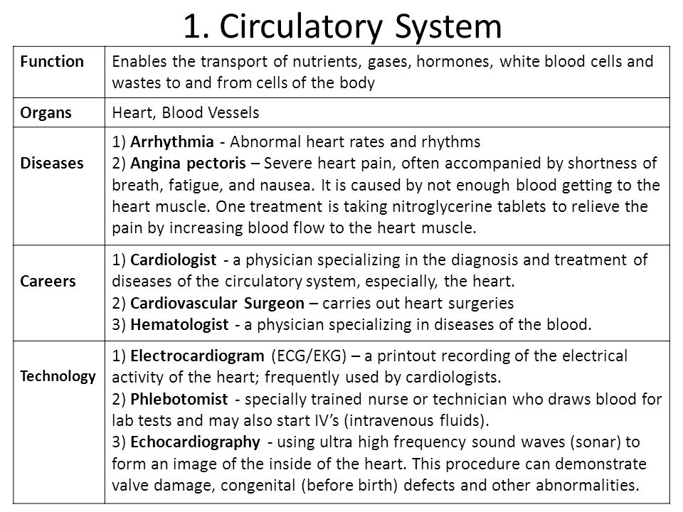 1. Circulatory System FunctionEnables the transport of nutrients, gases, hormones, white blood cells and wastes to and from cells of the body OrgansHe
