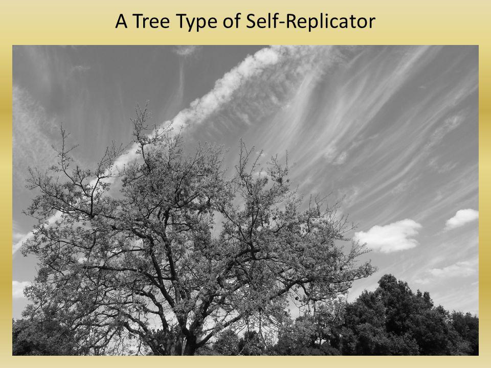 A Tree Type of Self-Replicator
