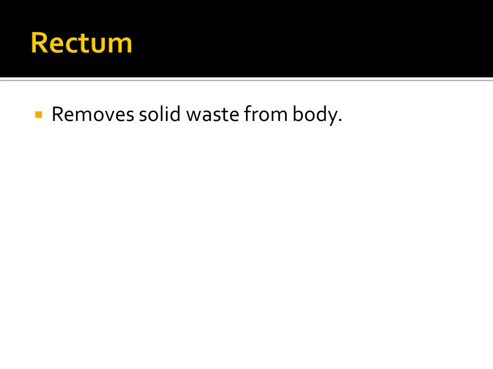  Removes solid waste from body.
