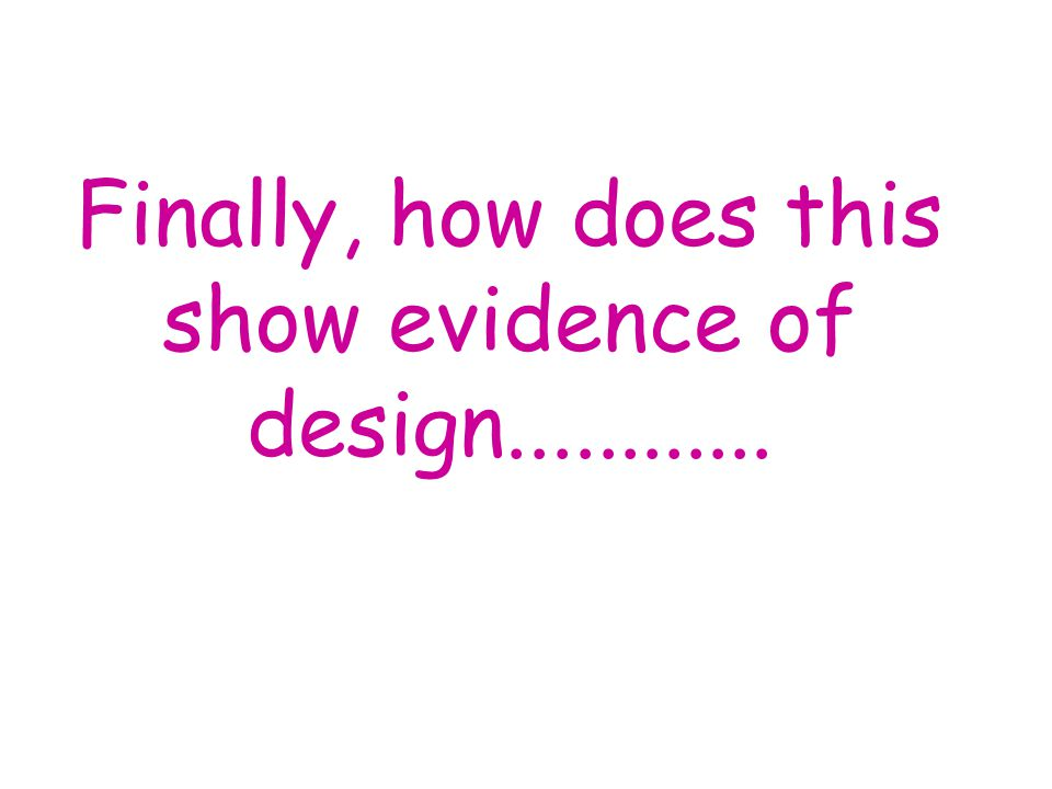 Finally, how does this show evidence of design............