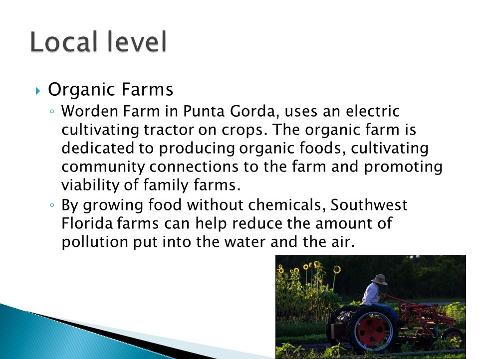  Organic Farms ◦ Worden Farm in Punta Gorda, uses an electric cultivating tractor on crops. The organic farm is dedicated to producing organic foods,
