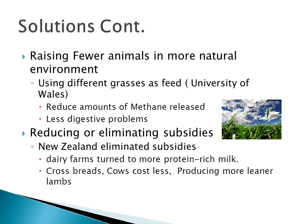  Raising Fewer animals in more natural environment ◦ Using different grasses as feed ( University of Wales)  Reduce amounts of Methane released  Le