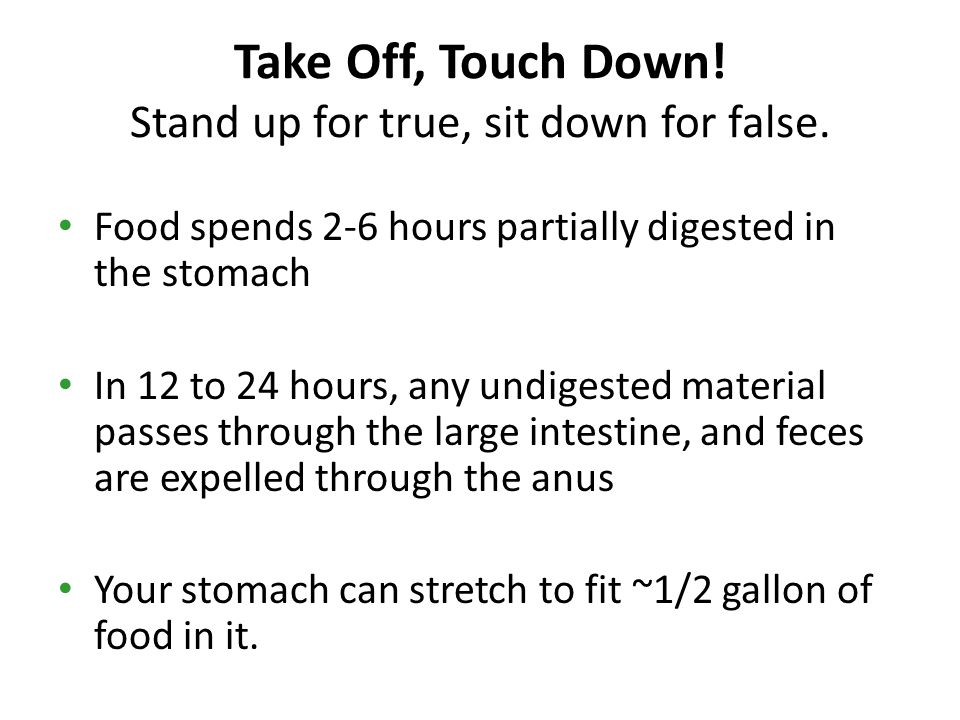 Take Off, Touch Down.Stand up for true, sit down for false.