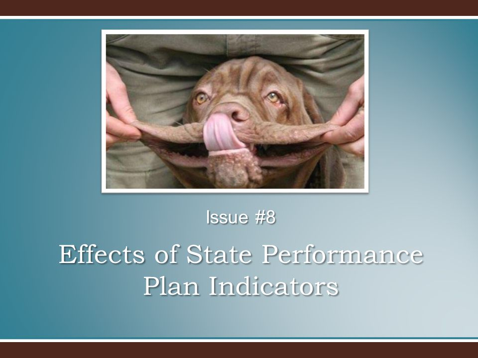 Effects of State Performance Plan Indicators Issue #8