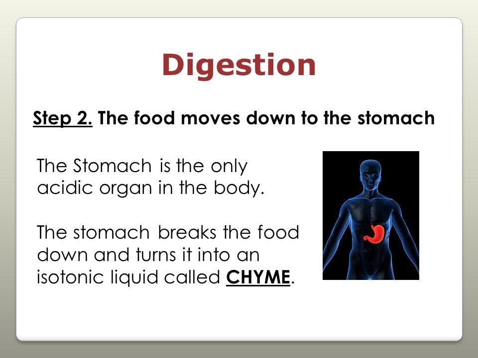 Digestion Step 2.