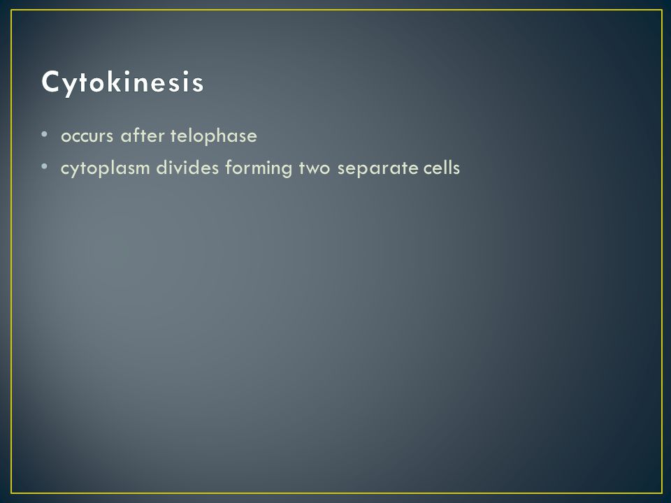 occurs after telophase cytoplasm divides forming two separate cells