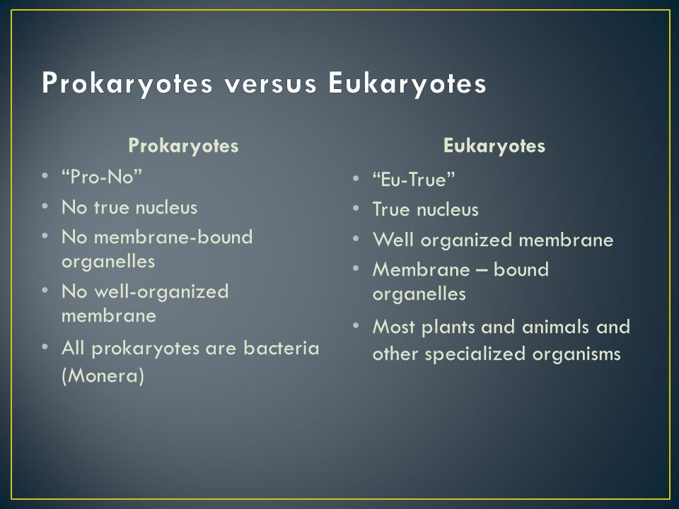 Prokaryotes Pro-No No true nucleus No membrane-bound organelles No well-organized membrane All prokaryotes are bacteria (Monera) Eukaryotes Eu-True True nucleus Well organized membrane Membrane – bound organelles Most plants and animals and other specialized organisms