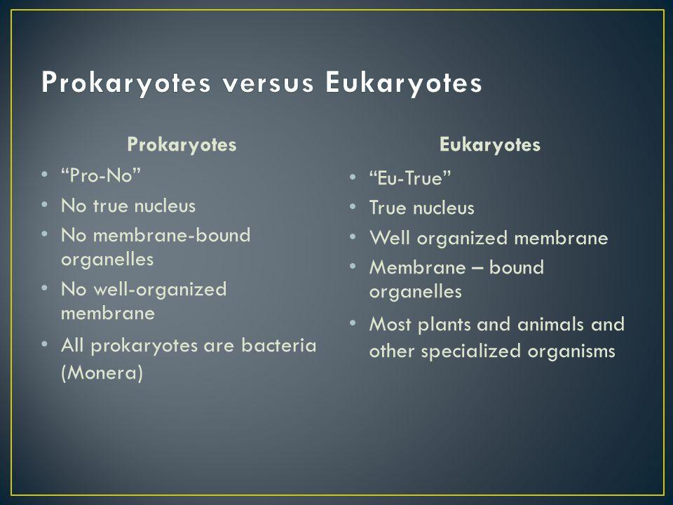 "Prokaryotes ""Pro-No"" No true nucleus No membrane-bound organelles No well-organized membrane All prokaryotes are bacteria (Monera) Eukaryotes ""Eu-True"