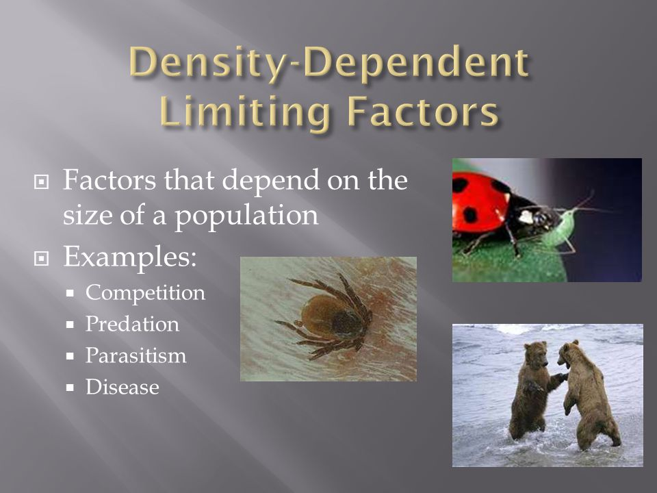 (-) Crowding and trampling of vegetation (-) Disease spreads easily (-) Vegetation is stripped