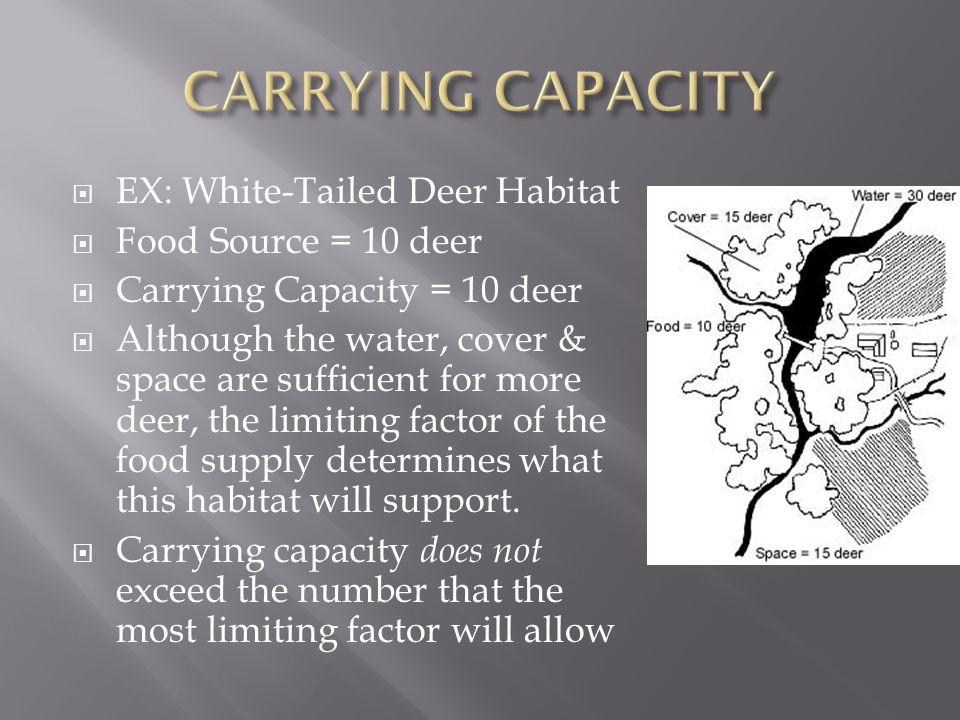  As resources become LESS available, the growth of a population SLOWS or STOPS  Leveling off is known as carrying capacity ( total # of individuals a population can support)
