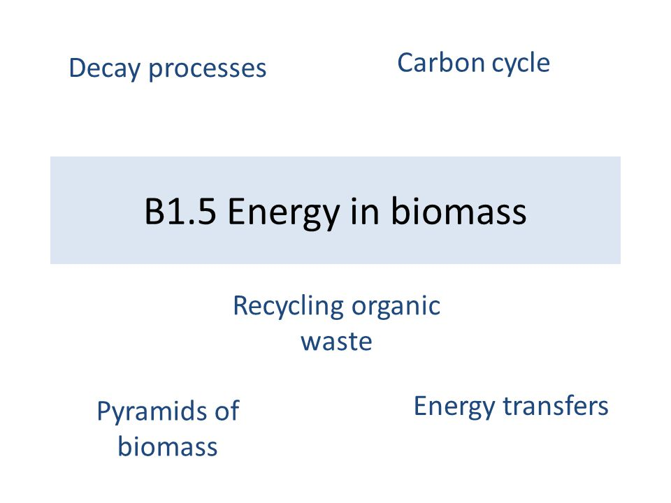 B1.5 Energy in biomass Pyramids of biomass Energy transfers Decay processes Carbon cycle Recycling organic waste