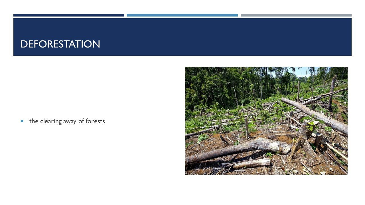 DEFORESTATION  the clearing away of forests
