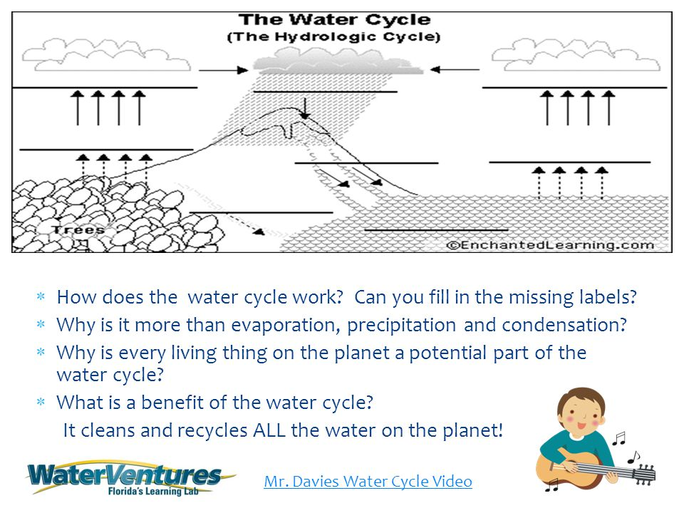  How does the water cycle work. Can you fill in the missing labels.