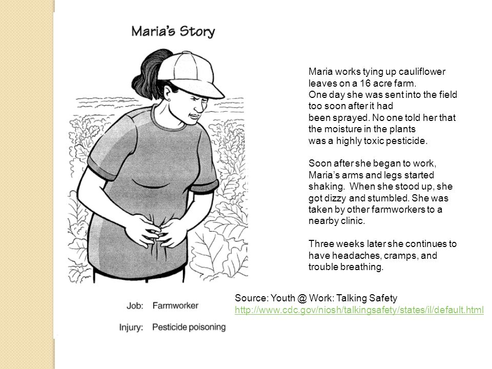 Source: Youth @ Work: Talking Safety http://www.cdc.gov/niosh/talkingsafety/states/il/default.html Maria works tying up cauliflower leaves on a 16 acre farm.