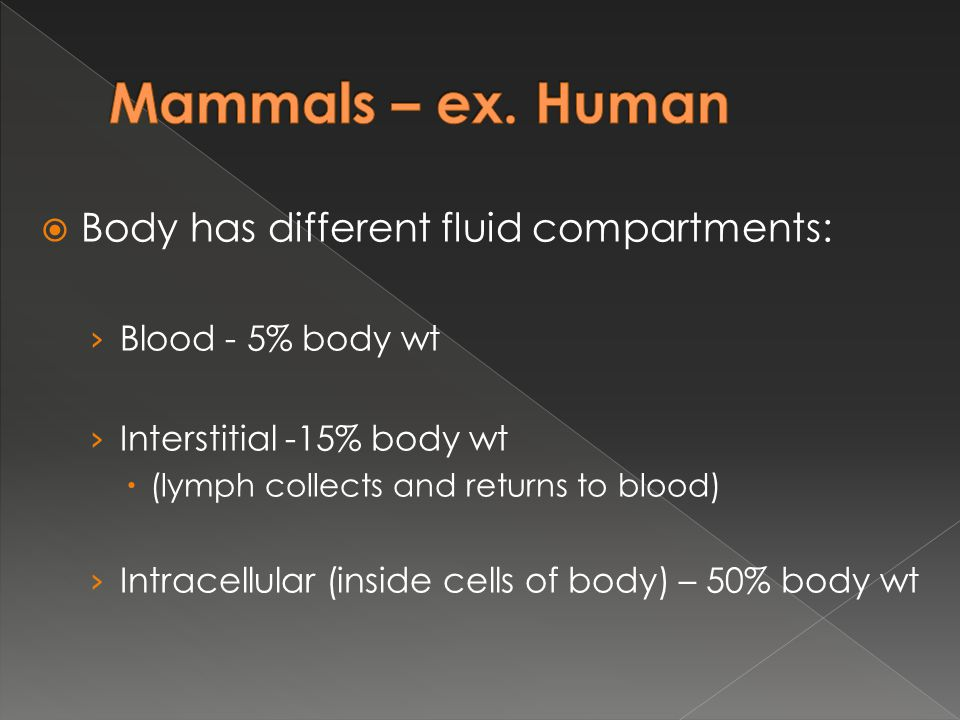  Body has different fluid compartments: › Blood - 5% body wt › Interstitial -15% body wt  (lymph collects and returns to blood) › Intracellular (ins