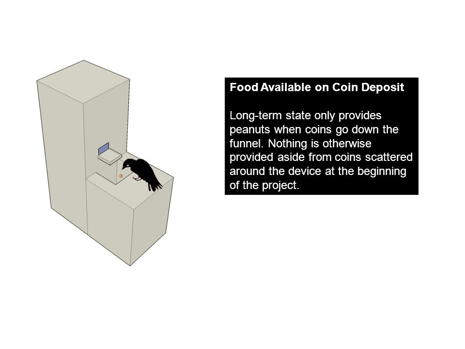 Food Available on Coin Deposit Long-term state only provides peanuts when coins go down the funnel.