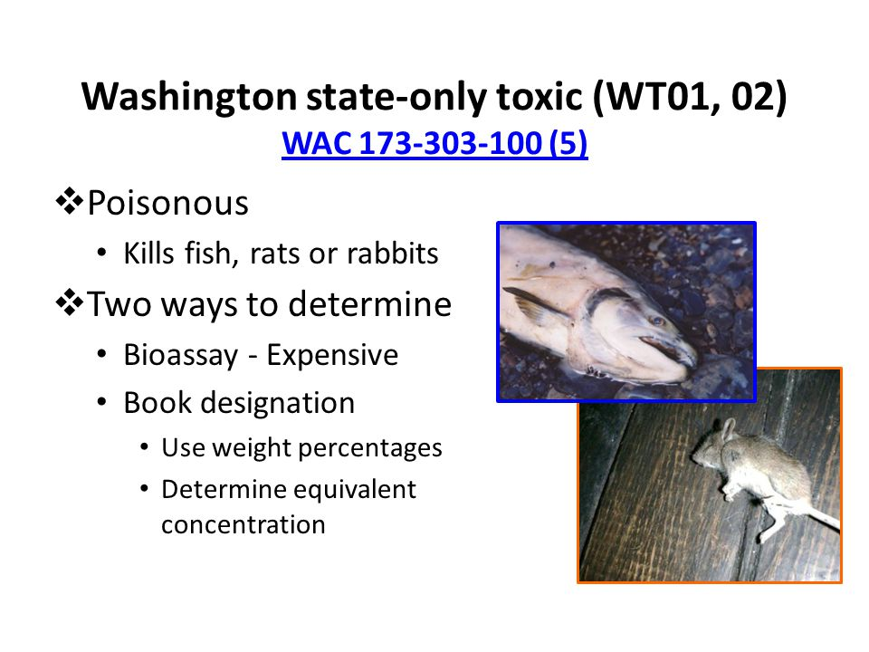 Washington state-only toxic (WT01, 02) WAC 173-303-100 (5) WAC 173-303-100 (5)  Poisonous Kills fish, rats or rabbits  Two ways to determine Bioassay - Expensive Book designation Use weight percentages Determine equivalent concentration