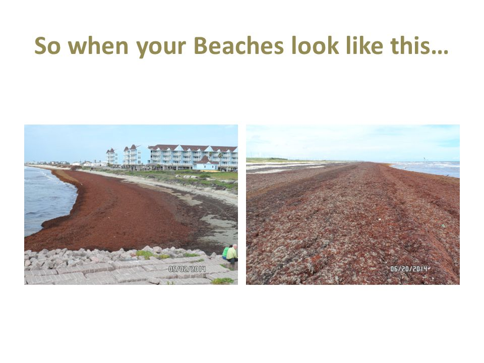 So when your Beaches look like this…