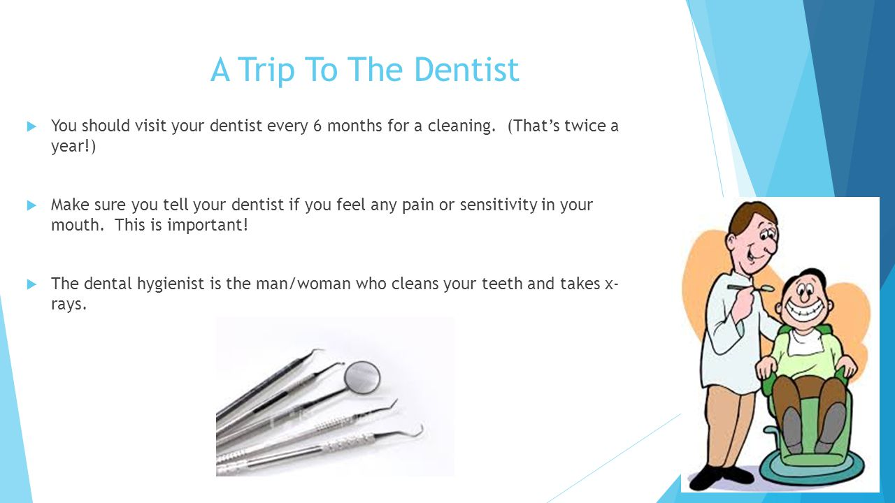 A Trip To The Dentist  You should visit your dentist every 6 months for a cleaning.