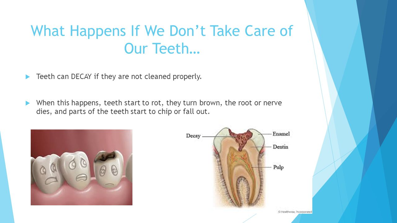 Did You Know. If you clean your teeth everyday and take care of them you can keep them forever.