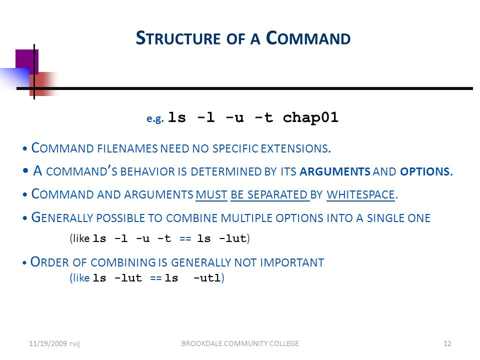 S TRUCTURE OF A C OMMAND e.g. ls -l -u -t chap01 C OMMAND FILENAMES NEED NO SPECIFIC EXTENSIONS.