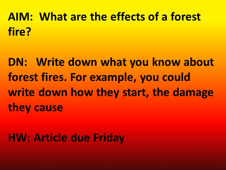 AIM: What are the effects of a forest fire. DN: Write down what you know about forest fires.