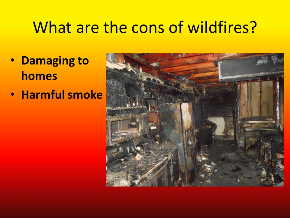 What are the cons of wildfires? Damaging to homes Harmful smoke