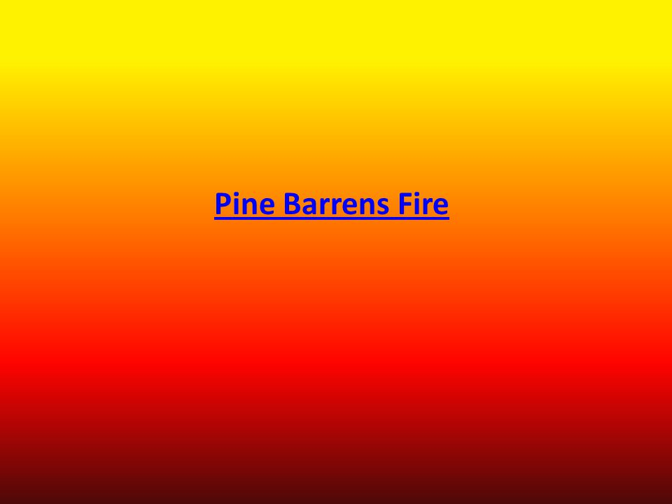 Pine Barrens Fire