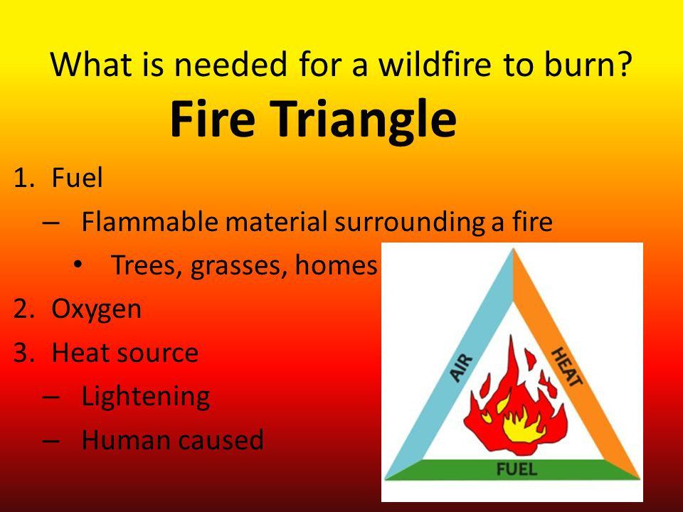 What is needed for a wildfire to burn.