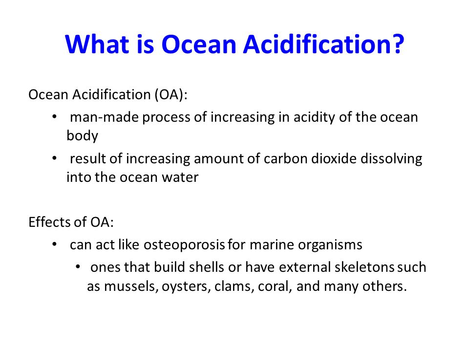 What is Ocean Acidification.