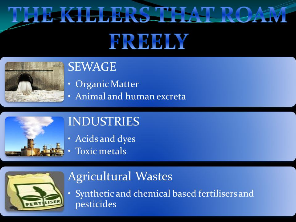 SEWAGE Organic Matter Animal and human excreta INDUSTRIES Acids and dyes Toxic metals Agricultural Wastes Synthetic and chemical based fertilisers and pesticides