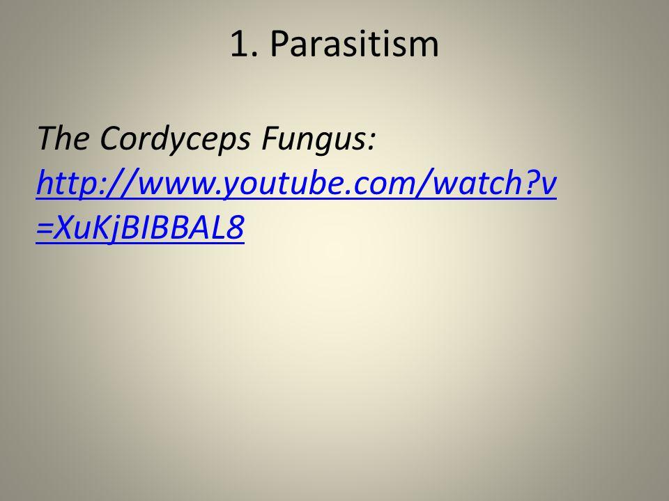 1. Parasitism The Cordyceps Fungus: http://www.youtube.com/watch?v =XuKjBIBBAL8 http://www.youtube.com/watch?v =XuKjBIBBAL8