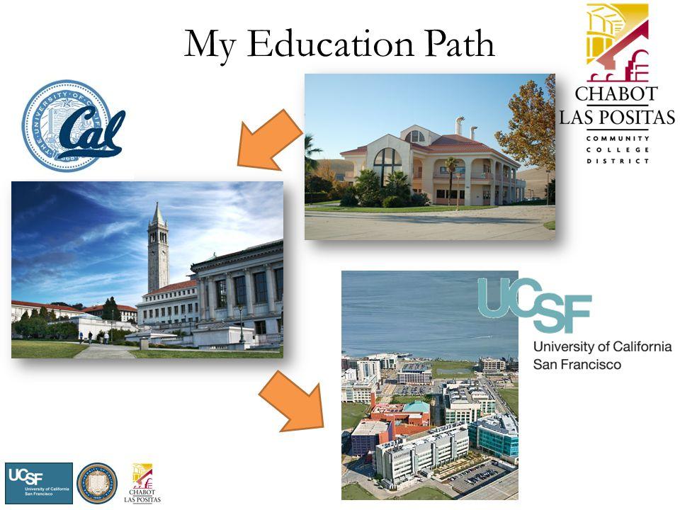 My Education Path