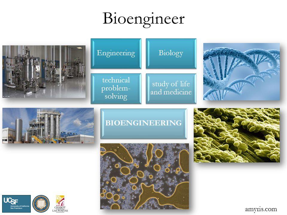 Bioengineer EngineeringBiology technical problem- solving study of life and medicine BIOENGINEERING amyris.com