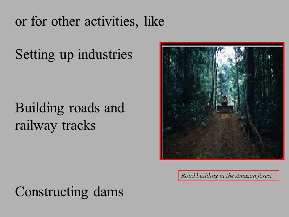 or for other activities, like Setting up industries Constructing dams Building roads and railway tracks Road building in the Amazon forest