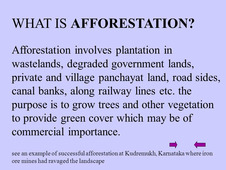 WHAT IS AFFORESTATION? Afforestation involves plantation in wastelands, degraded government lands, private and village panchayat land, road sides, can