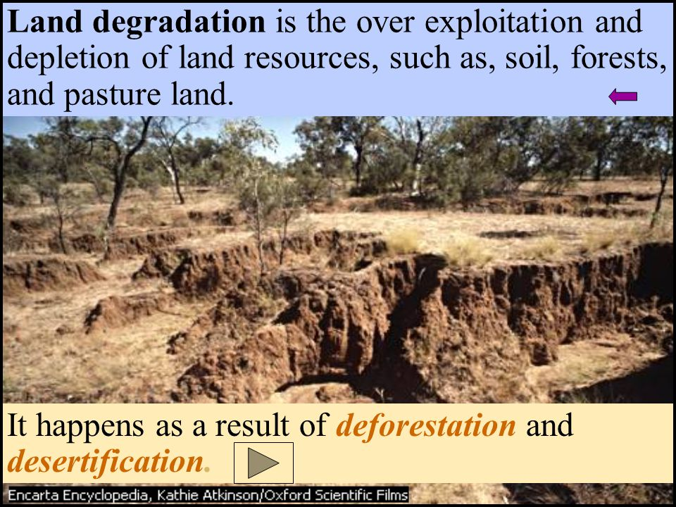Land degradation is the over exploitation and depletion of land resources, such as, soil, forests, and pasture land. It happens as a result of defores