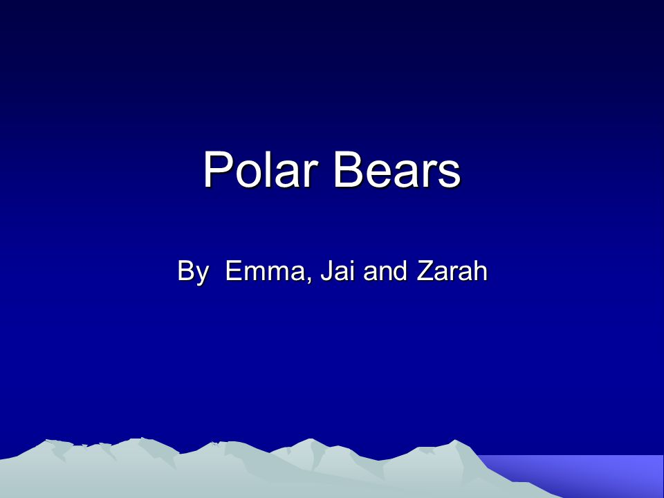 Polar Bears By Emma, Jai and Zarah