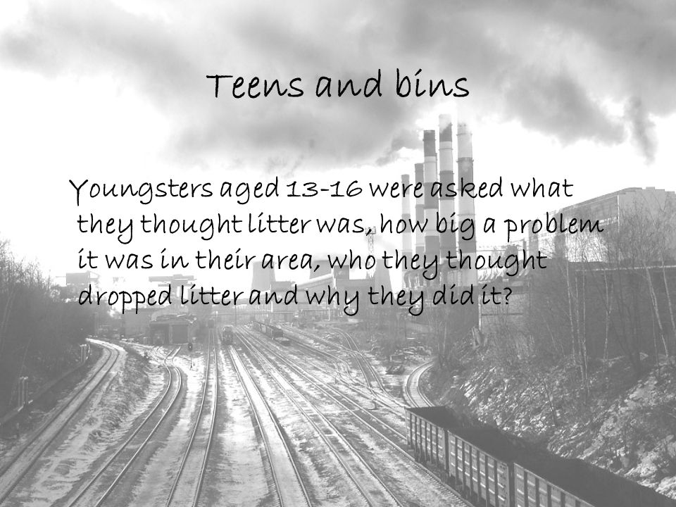 Teens and bins Youngsters aged 13-16 were asked what they thought litter was, how big a problem it was in their area, who they thought dropped litter and why they did it
