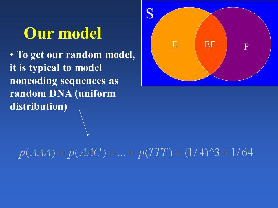 Our model To get our random model, it is typical to model noncoding sequences as random DNA (uniform distribution) S E F EF