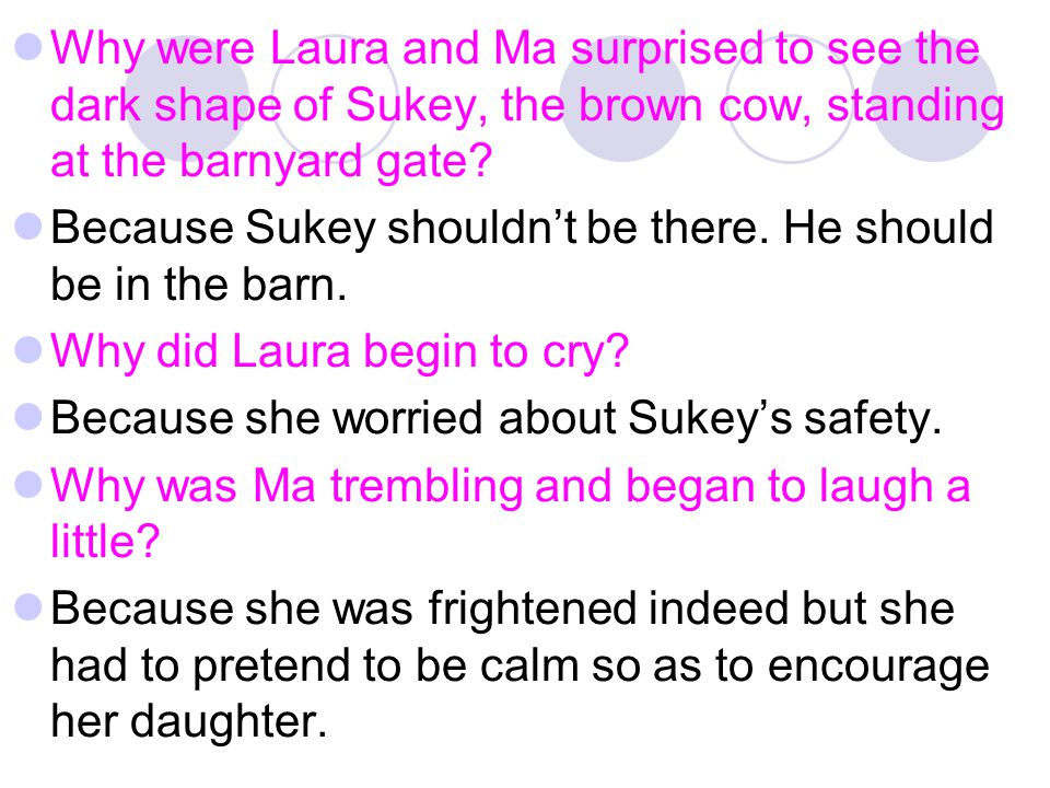 Why were Laura and Ma surprised to see the dark shape of Sukey, the brown cow, standing at the barnyard gate? Because Sukey shouldn't be there. He sho