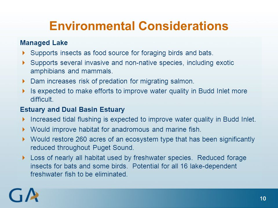 10 Environmental Considerations Managed Lake  Supports insects as food source for foraging birds and bats.  Supports several invasive and non-native