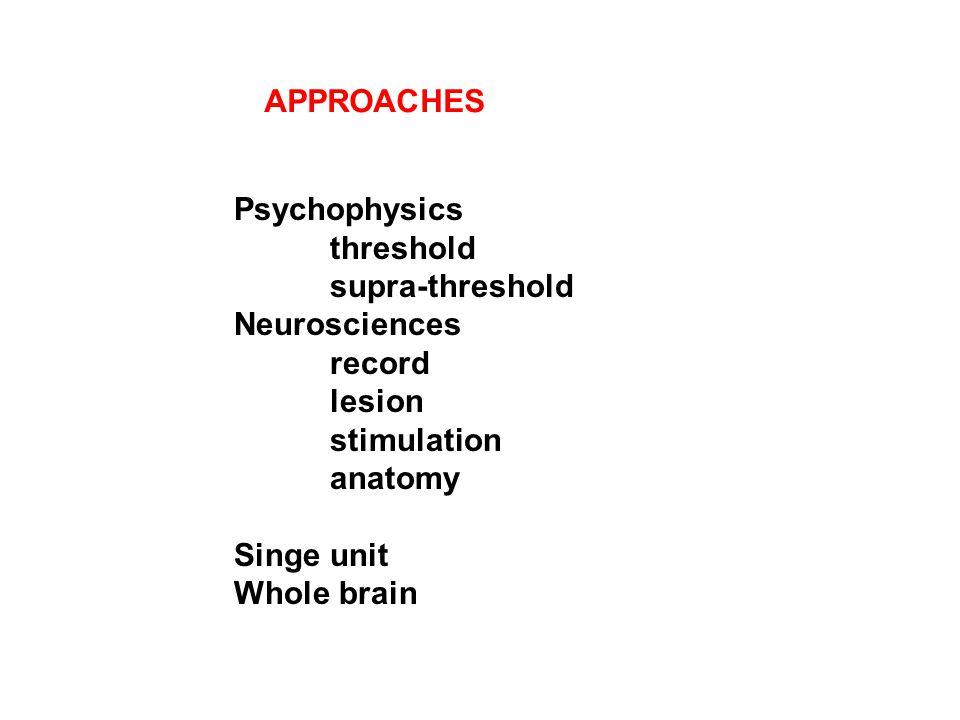 Psychophysics threshold supra-threshold Neurosciences record lesion stimulation anatomy Singe unit Whole brain APPROACHES